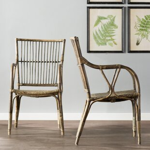 Camryn Arm Chair (Set of 2) by Beachcrest Home