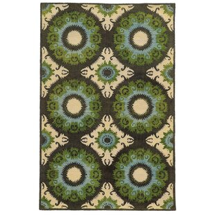 Best Reviews Tommy Bahama Jamison Black / Green Abstract Rug ByTommy Bahama Home