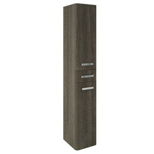 Trujillo 30cm X 172cm Wall Mounted Cabinet By Ebern Designs