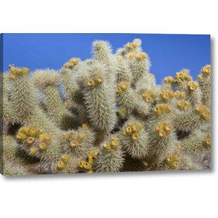 Cactus Print | Wayfair
