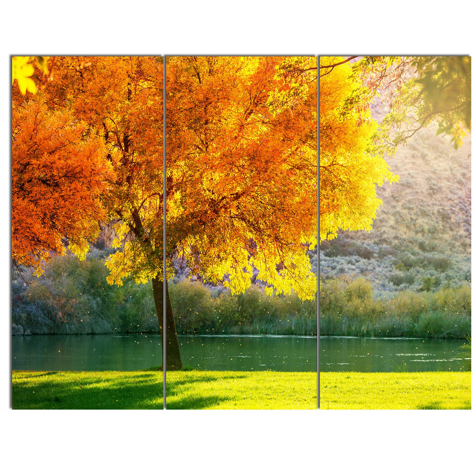 Designart Beautiful Autumn Season In Forest 3 Piece Photographic Print On Wrapped Canvas Set Wayfair