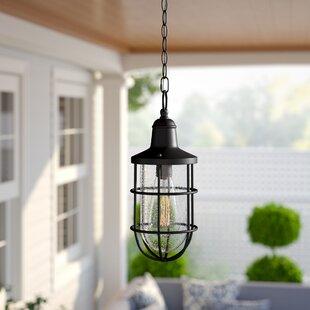 Linjia 1-Light Outdoor Hanging Lantern