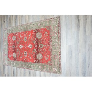 Michaela Cotton/Polyester Red Area Rug by World Menagerie