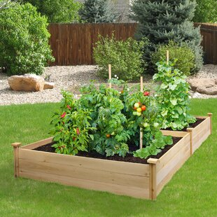 Raised Garden Beds Elevated Planters You Ll Love Wayfair
