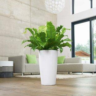 Rondo Plastic Self-Watering Plant Pot By Lechuza