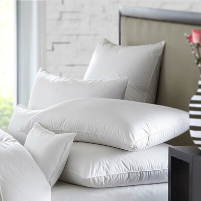 Side Standard Bed Pillows You Ll Love In 2019 Wayfair
