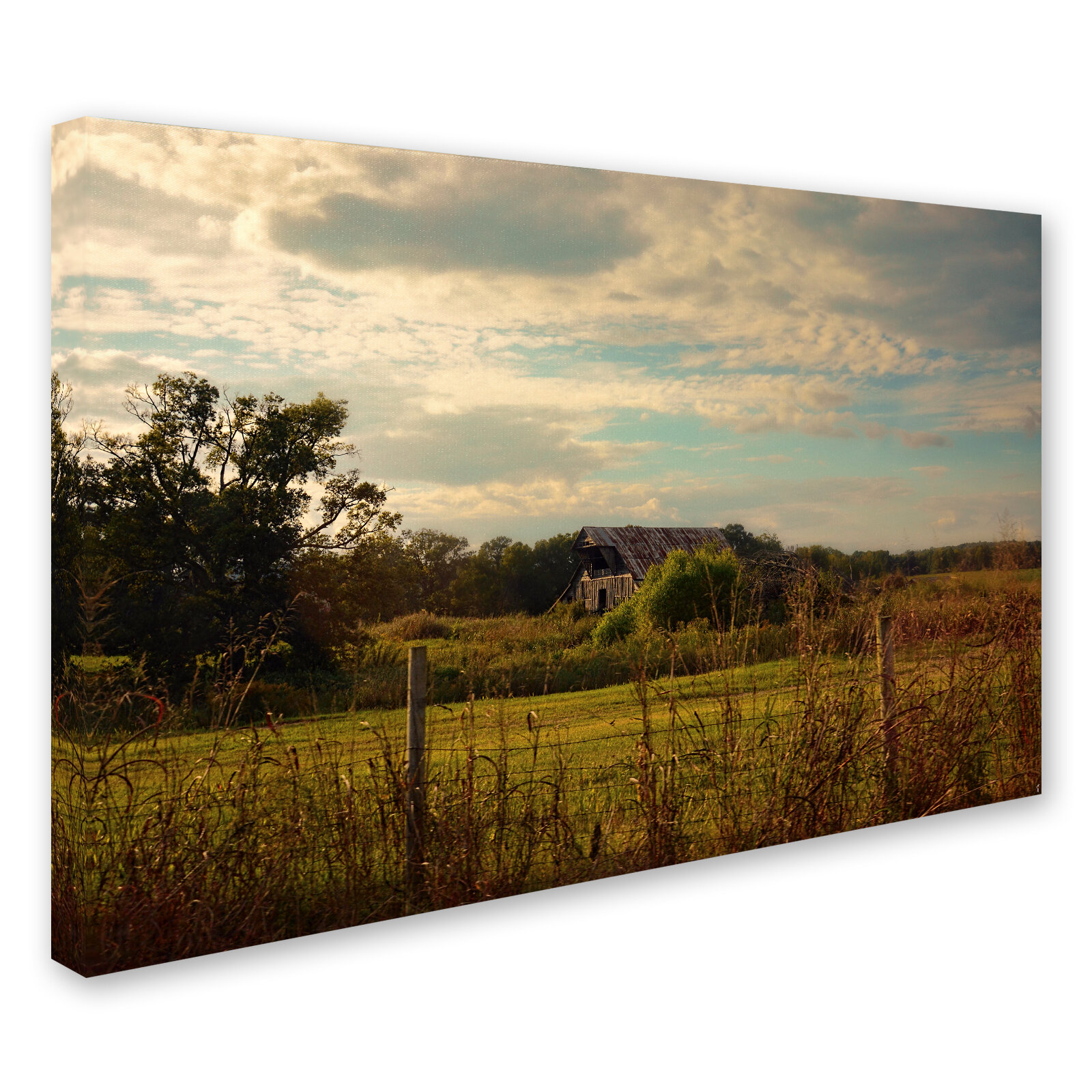 COTTON GRASS FIELD SUNSET MODERN CANVAS WALL ART PRINT PICTURE READY TO HANG