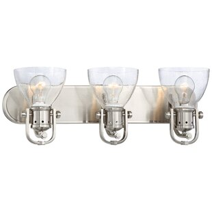 Latitude Run Hattaway 3-Light Vanity Light