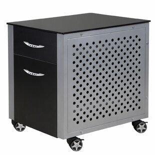 Racing Style 2 Drawer Cabinet by PitStop Furniture Modern