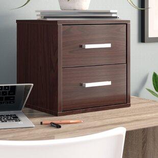 Ebern Designs Adah 2 Drawer Lateral Filin..