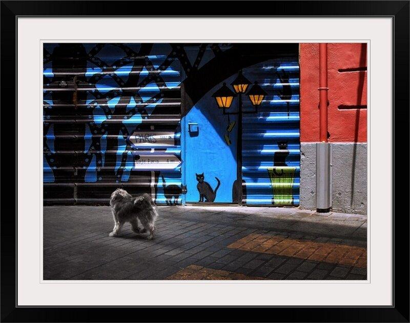 East Urban Home The Street Cats By Juan Luis Duran Photographic Print Wayfair