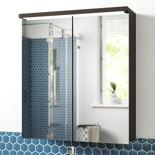 Carmela 60 Cm X 68 Cm Surface Mount Mirror Cabinet With Lighting By Zipcode Design
