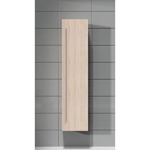 40cm X 170cm Corner Wall Mounted Cabinet By Ebern Designs
