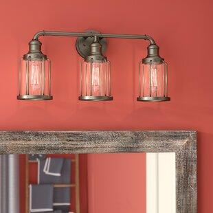 Williston Forge DeBary 3-Light Vanity Light