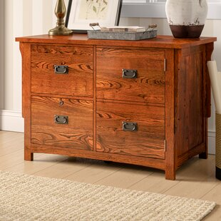 Limon 2-Drawer Lateral Filing Cabinet with Door by Birch Lane™ Heritage