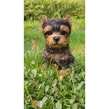 Sitting Yorkshire Terrier Puppy Statue byHi-Line Gift Ltd.