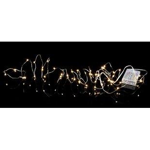 40-Light Octavia String Lights By The Seasonal Aisle