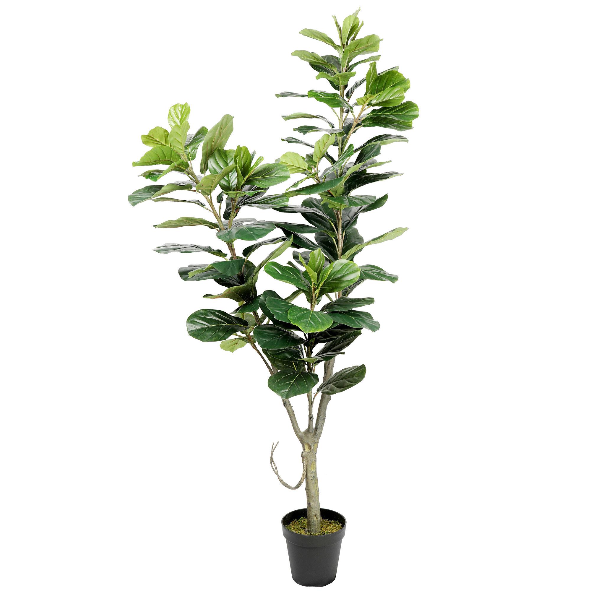 Primrue 74 Artificial Fiddle Leaf Fig Tree In Pot Reviews Wayfair