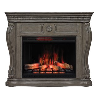 Gardiner Wall Mantel Electric Fireplace by Astoria Grand