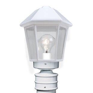 Donnie Classic 1-Light Lantern Head by Latitude Run