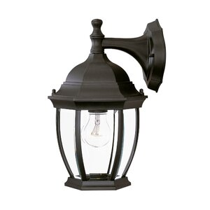 Drumkeeran 1-Light Outdoor Wall Lantern
