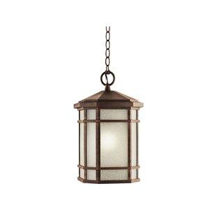 Savings Robles 1-Light Outdoor Hanging Lantern By Loon Peak