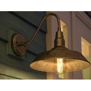 Aurelia Outdoor Barn Light by Laurel Foundry Modern Farmhouse