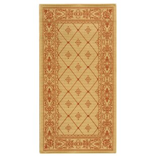 Short Natural / Terra Indoor/Outdoor Area Rug