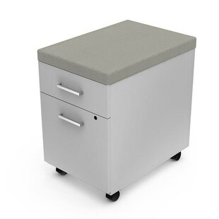 Latitude Run Flynt 2 Drawer Mobile Vertical Filing Cabinet