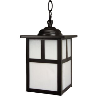 Best Biali 1 Light Outdoor Hanging Lantern By Charlton Home