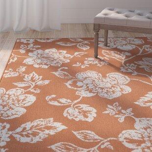 Kofi Orange/White Indoor/Outdoor Area Rug