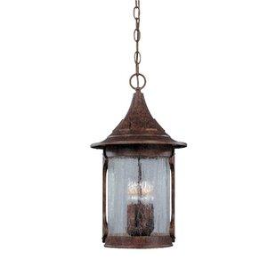 Loon Peak Waneta 4-Light Outdoor Hanging Lantern
