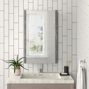Craig 50cm X 80cm Surface Mount Mirror Cabinet By Zipcode Design