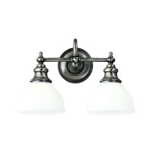 Darby Home Co Amalda 2-Light Vanity Light