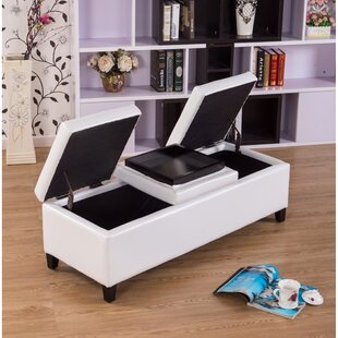 Eleesha Storage Ottoman by War..