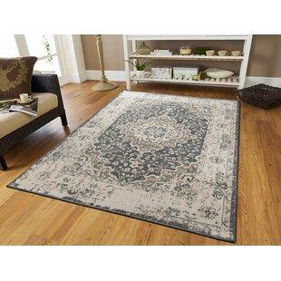 Schoenberger Beige/Gray Indoor/Outdoor Area Rug