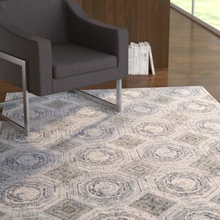 Affordable Price Ewers White/Sterling Area Rug ByEbern Designs