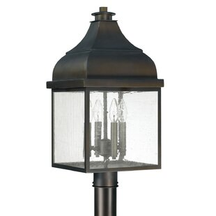 Arnette Outdoor 4-Light Lantern Head by Darby Home Co