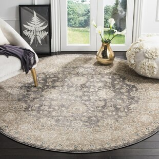 Sofia Beige/Gray Area Rug by Darby Home Co