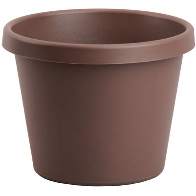 Pot Planter (Set of 6) Myers/Akro Mills Color: Chocolate, Size: 16.25'' H x 20'' W x 20 D