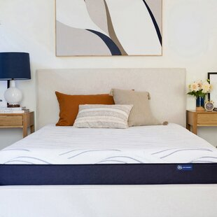 Serta Perfect Sleeper 10