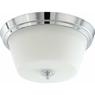 2-Light LED Flush Mount by Efficient Lighting