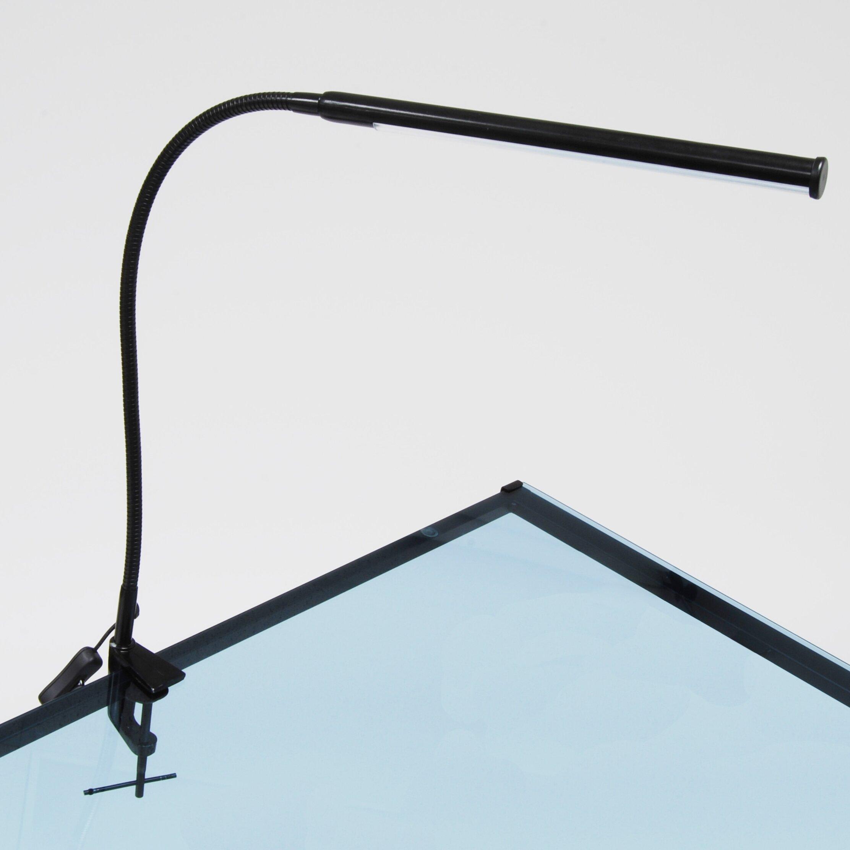 12 cm Studio Light Craft Dome