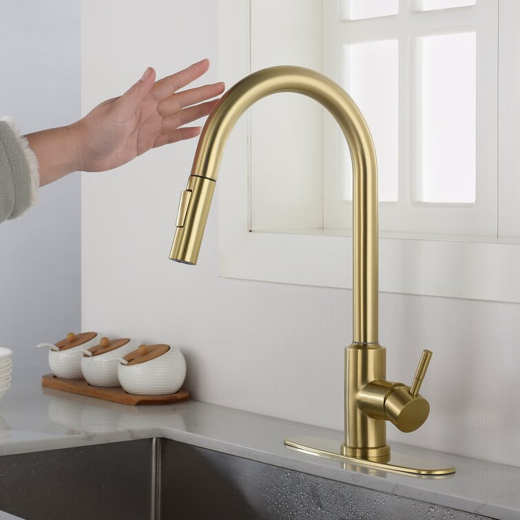 Organnice Stainless Steel Pull Out Touch Single Handle Kitchen Faucet Reviews Wayfair