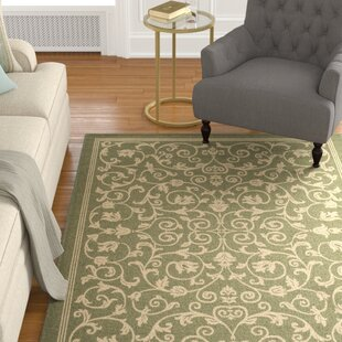 Bexton Green Indoor/Outdoor Area Rug