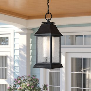 Roseman 1-Light Outdoor Hanging Lantern