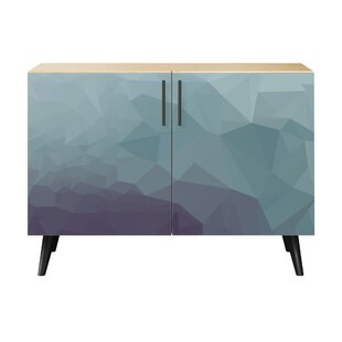 Brayden Studio Obrien 2 Door Cabinet