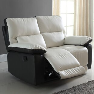 Recliner Reclining Loveseat