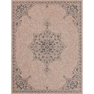 Cracraft Black/Gray Indoor/Outdoor Area Rug