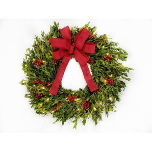 boxwood and berries 22 lighted wreath by the holiday aisle